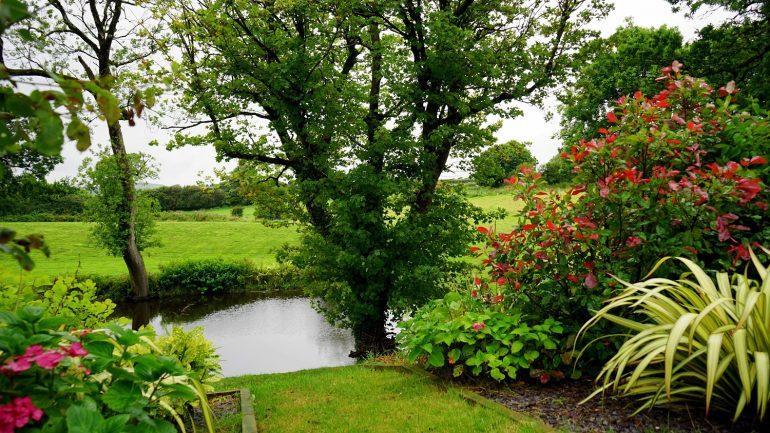 Krok za krokom, ako si vytvoriť vlastnú záhradu