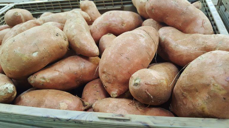 Jednoduchý návod, ako si dopestovať sladké zemiaky