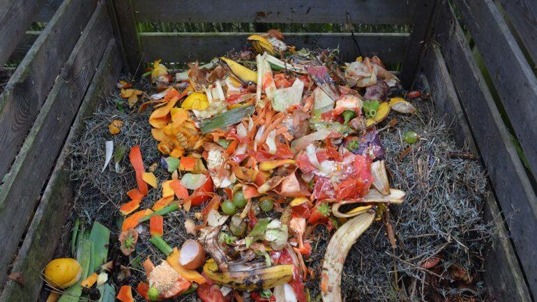 50 každodenných vecí, ktoré sa hodia na váš kompost, II