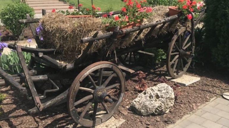 10 kvetinových záhonov pre krajšiu záhradu