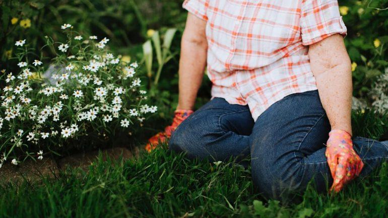 záhradka pomáha v boji s demenciou