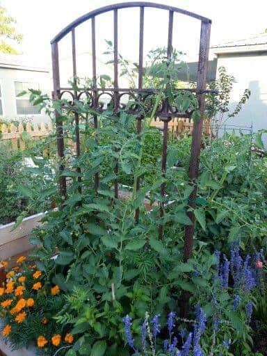 záhradné dekorácie