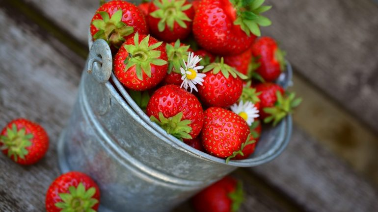práce v ovocnej záhrade
