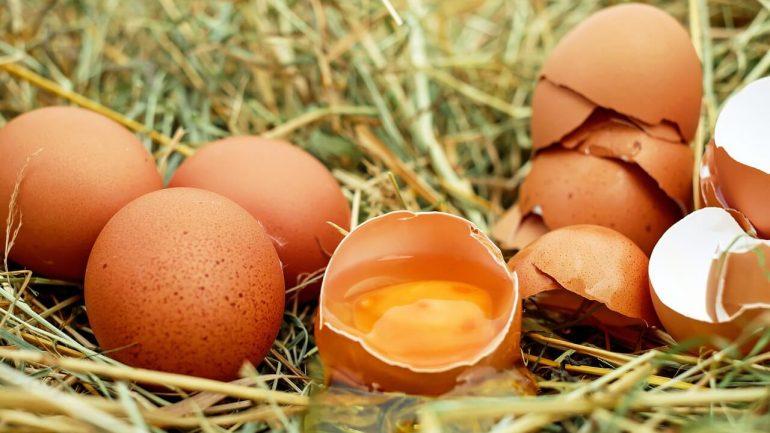 Čo sa deje s vašim telom, ak budete konzumovať 2 vajcia denne?
