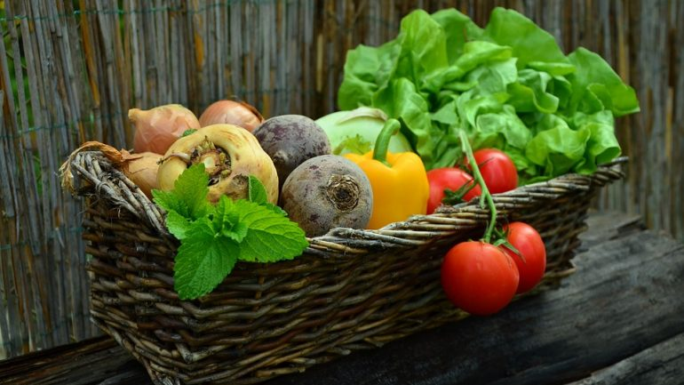 zeleninová záhrada