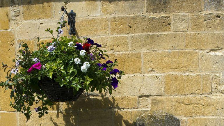 Kvety v závesnom koši, aké druhy použiť?