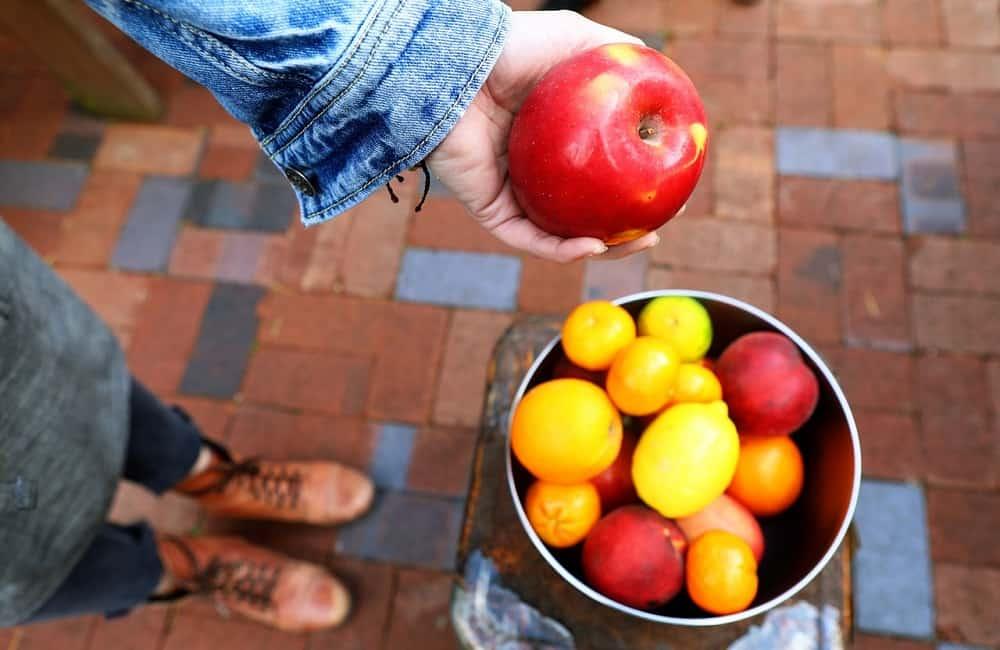 jablká, úroda