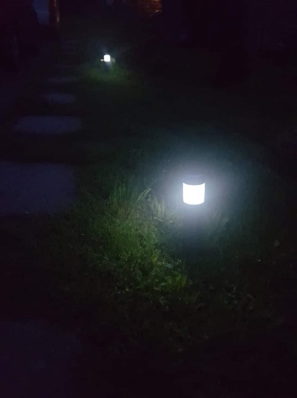 Záhradné svetlušky