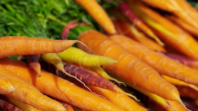 ako konzervovať mrkvu