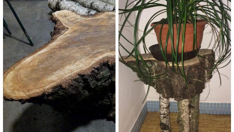 Biela dekorácia z brezy: Dokáže oslniť čistotou!