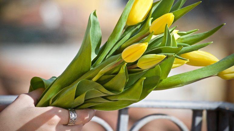 kvety - recept na dlhší život