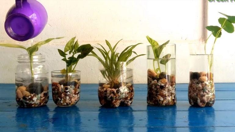 Ako založiť záhradku z recyklovaného materiálu
