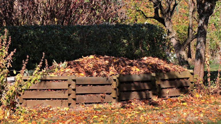 Jesenné upratovanie: Čo dať do kompostu?