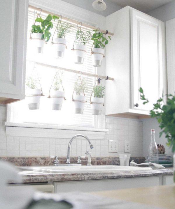 bylinkovú záhradu v byte
