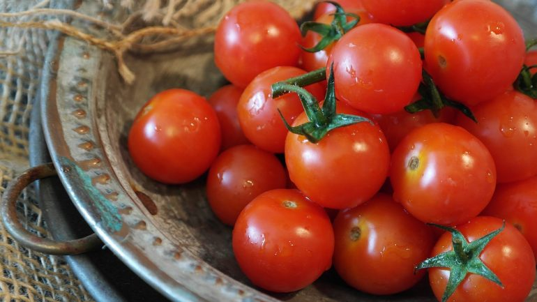 paradajky