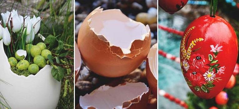 Unikátne a užitočné využitie vaječných škrupín, ktoré vás bude inšpirovať
