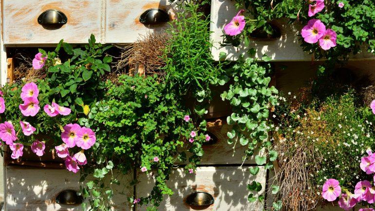 6 nápadov, ako kreatívne vytvoriť záhradu zeleniny, I.časť