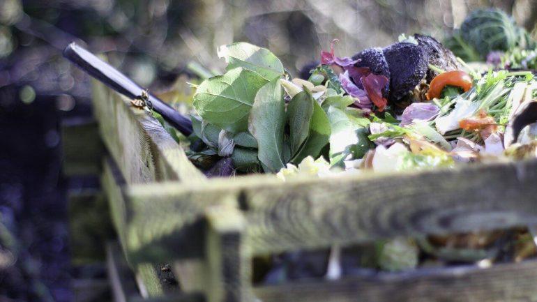 10 tipov pre zimné kompostovanie, ktoré treba vedieť, I.