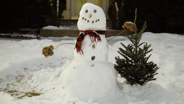 Akého snehuliaka postaviť na záhrade?