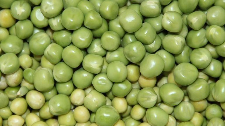 Kedy a ako sadiť chutný zelený hrášok