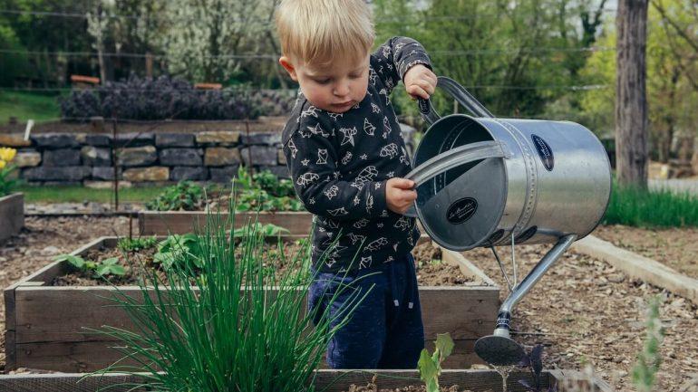 Ako efektívne zalievať letnú záhradu