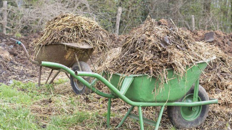 Spoznajte organické hnojivá pre vašu ekologickú záhradu