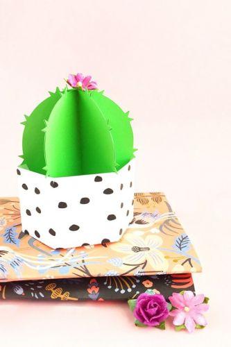 Kaktusová dekorácia